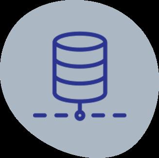 Tridens services - system integration